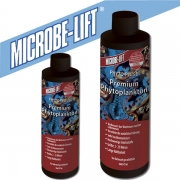 Microbe-Lift Phyto-Plus B Phyto-Plankton 473 mL